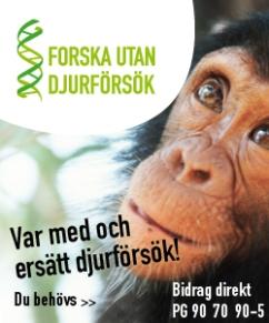 banner_forska