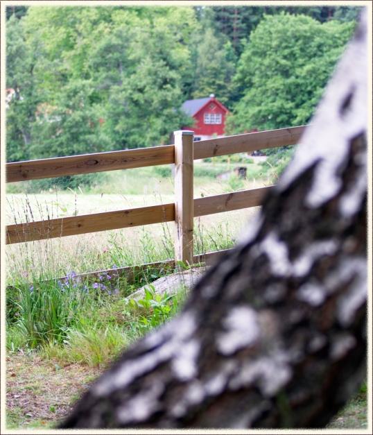 engelskt-staket