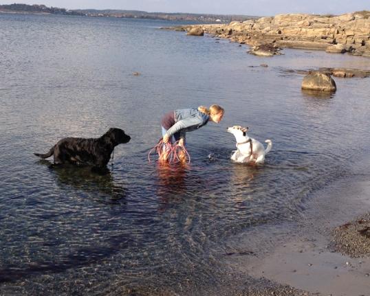 havet-hundar5