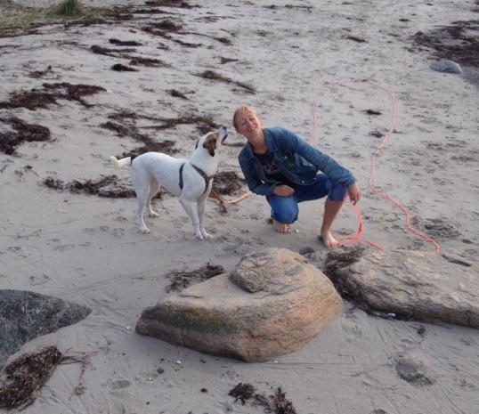 havet-hundarna