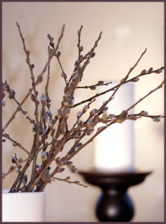 blogg-blommor1