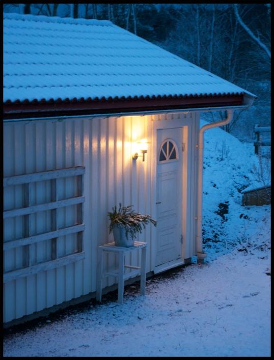 honshus-vinter