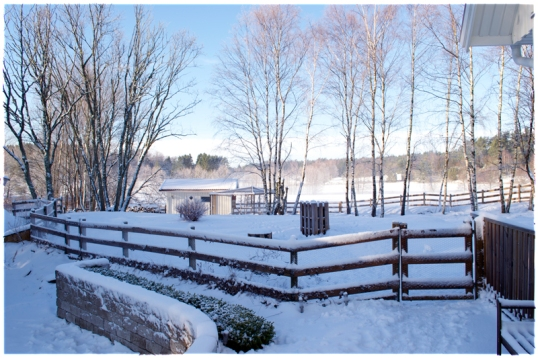 lantliv-vinterlandskap