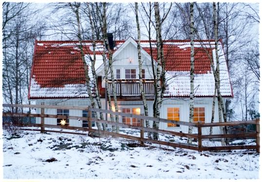 vintertradgard-lantliv