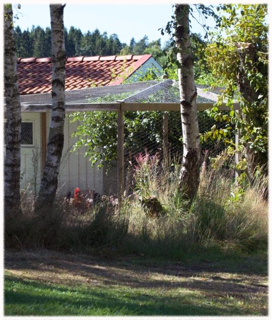 jordgetingar-tradgarden