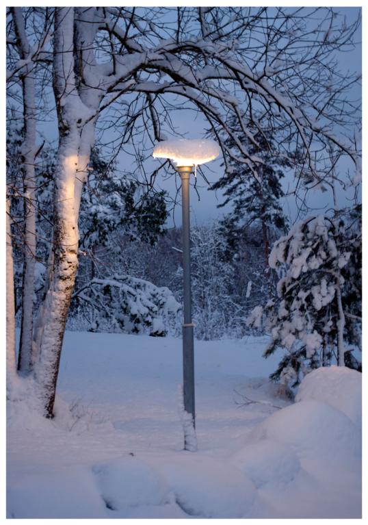 honsen-pa-vintern1