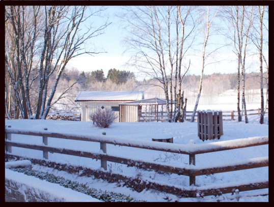 honshuset-vintern2