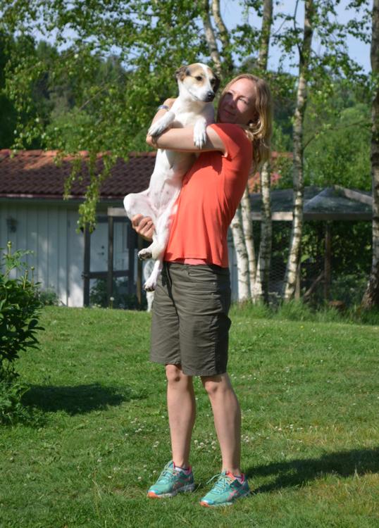 adoptera-en-hund1